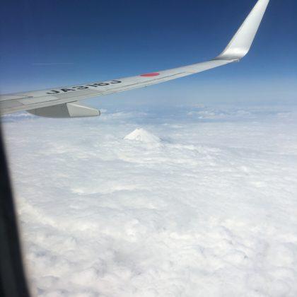 雪に覆われた富士山