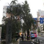 江戸川橋を街散歩!マイナーな坂の街を実際に歩いて見ました!